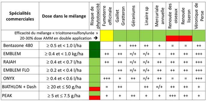 Efficacité des compléments AD de postlevée (base tricétone + nicosulfuron)