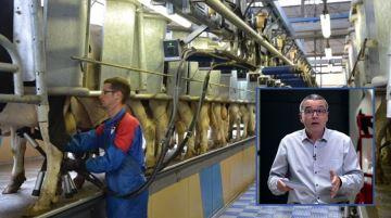Des signes d'amélioration confirment la tendance à la hausse du prix du lait