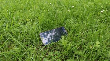 Grassman: l'application mobile dédiée à la culture de l'herbe