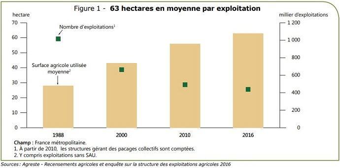 SAU moyenne et nombre d'exploitations agricoles