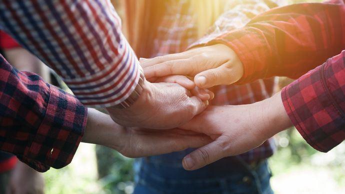 mains d'agriculteurs en groupe