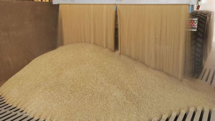 Conservation des grains
