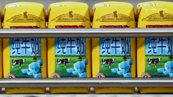Les maîtres laitiers du Cotentin ne produiront plus de lait infantile pour son client chinois Synutra, qui a décidé unilatéralement, selon la coopérative laitière, de rompre son contrat.