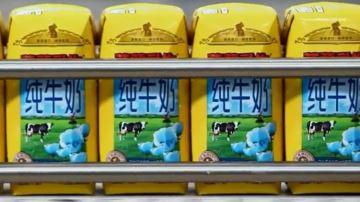 Synutra rompt son contrat avec Les maîtres laitiers du Cotentin