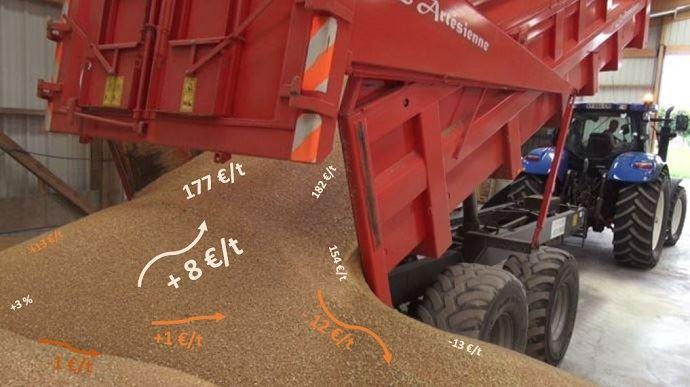 Près des deux tiers des producteurs ont une partie de leur récolte de blé tendre 2018 à commercialiser.