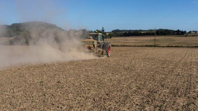 Le temps sec en Europe perturbe les semis de colza