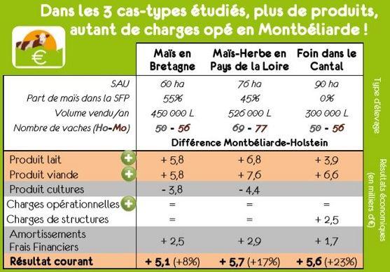 D'après les résultats de l'étude, les produits de la Montbéliarde seraient supérieurs à ceux de la Holstein avec des charges opérationnelles identiques.