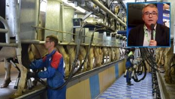 Les marchés laitiers restent orientés à la hausse, selon le Cniel