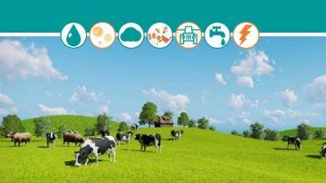 Les vraies conséquences de l'élevage bovin sur l'environnement