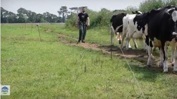 Les fermes laitières recrutent!