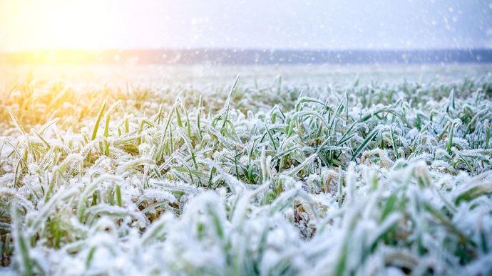 Gel et neige