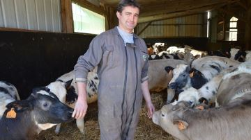 M. Renaud (56) : «En 10 ans, j'ai diminué de 50% les traitements antibios»