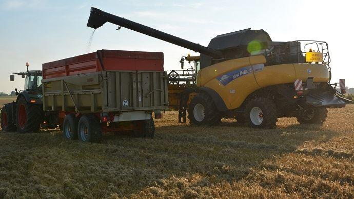 Les cours du blé devrait, selon la Commission européenne, se maintenir à un niveau stable autour de 170€/t à l'horizon 2030.