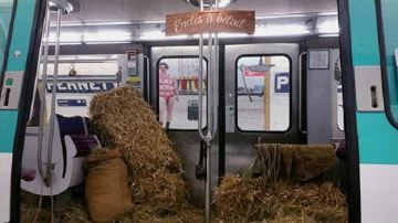 Une rame remplie de paille pour «y entasser le bétail»