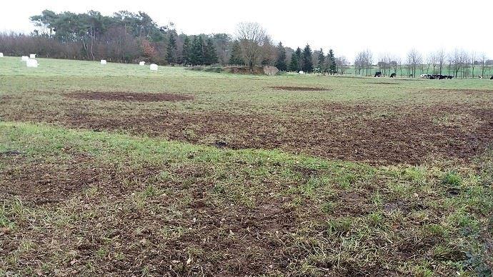 Pâturage hivernal: méthode du bale grazing, enrubannage dans les pâtures