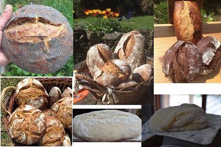 diverses sortes de pain produits par franck perrault