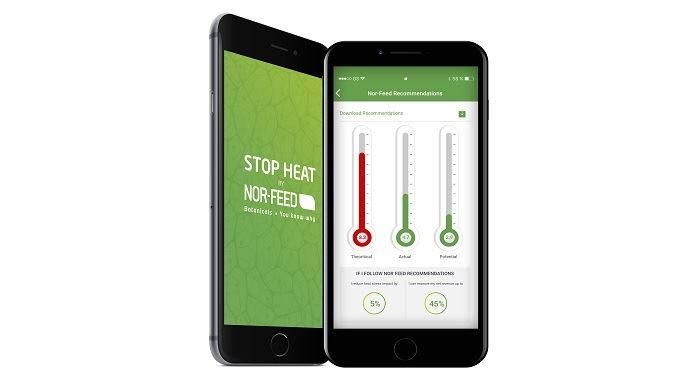 Nor-feed crée «Stop heat», une application mobile qui permet d'évaluer le stress thermique chez les animaux d'élevage