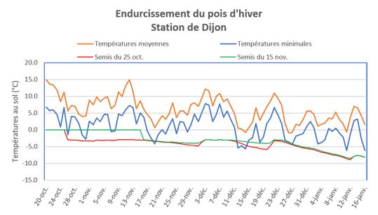 Endurcissement du pois d'hiver - Dijon