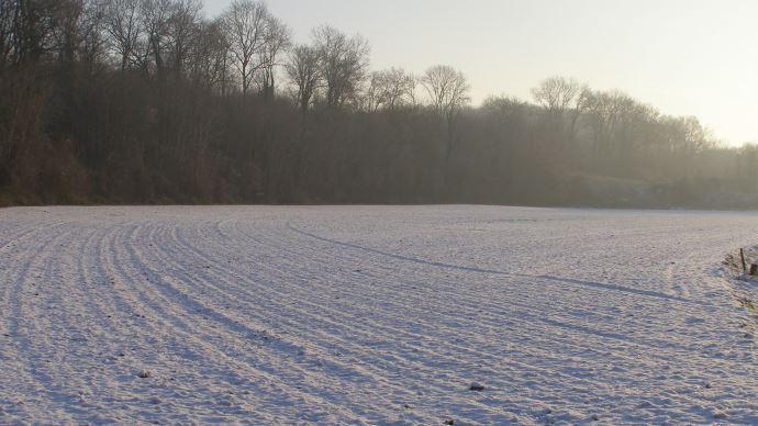 Parcelle sous la neige