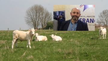 De la rémunération ou la décapitalisation: les éleveurs toujours sous pression