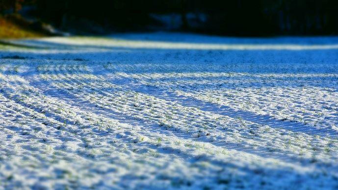 La vague de froid polaire continue sa progression aux États-Unis