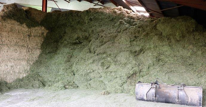 Une partie du bâtiment est consacrée au stockage de luzerne séchée. Cette case peut accueillir jusqu'à 120 tonnes de fourrage, soit 12ha.
