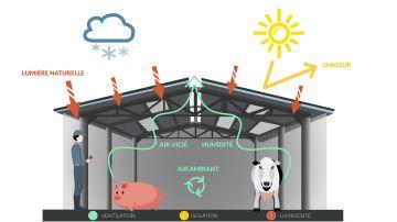 Les trois piliers de la couverture des bâtiments d'élevage