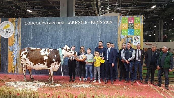 hamilton grande championne normande au salon del agriculture 2019