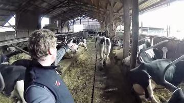 Une journée à la ferme avec Étienne Fourmont, c'est pas de répit (ou presque)