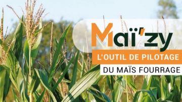 Piloter son maïs fourrage du semis à la récolte grâce au nouvel outil Maï'zy