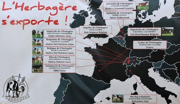France, Allemagne, Suisse, Italie: la génétique de L'Herbagère s'exporte et intéresse bon nombre d'éleveurs.