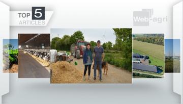 Les éoliennes et la santé des bovins font la Une sur Web-agri