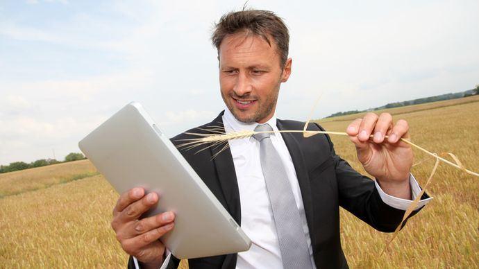 Homme avec sa tablette dans un champ de céréales