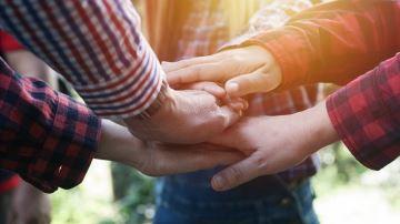 Salariés et associés: comment bien travailler ensemble?