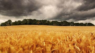 L'indemnisation des agriculteurs en pleine évolution