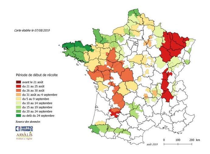 Carte prévisions ensilage de maïs