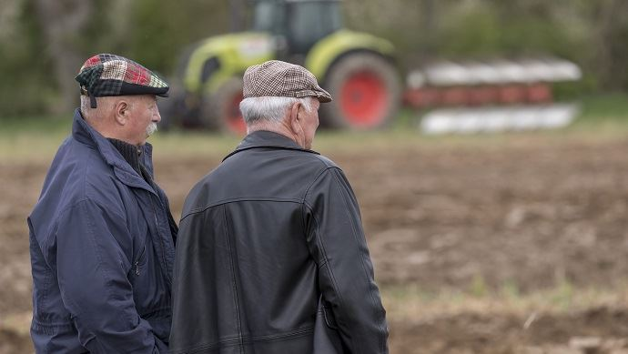 vieux agriculteurs dans un champ