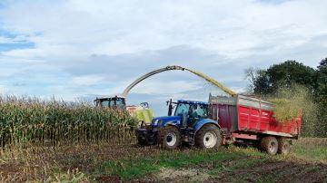 Avec lasécheresse, les ensilages de maïs 2019 ont déja débuté !