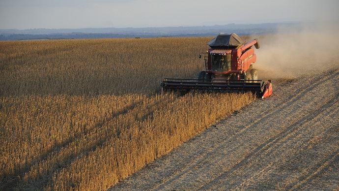 L'Union européenne importe chaque année 17 millions de tonnes de protéines brutes végétales parmi lesquelles 13 Mt sont à base de soja.
