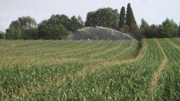Des organisations agricoles souhaitent une révision de la directive européenne
