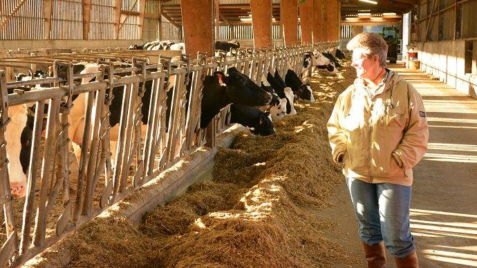 Les femmes agricultrices ont pu avoir le statut de co-exploitante en 1980 seulement.