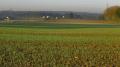 Décaler la date de semis: levier testé et approuvé