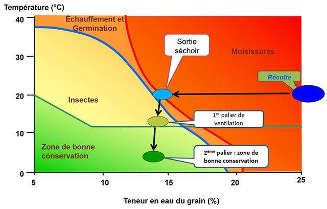 Plus la température et l'humidité des grains sont élevées, plus les risques de dégradation sanitaire sont forts