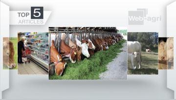 L'autonomie fourragère des élevages, le sujet plébiscité cette semaine