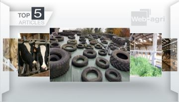 Le recyclage des pneus usagés, un sujet majeur pour les éleveurs
