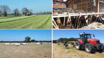 Unemétéo éprouvante pour les éleveurs et leurs animaux