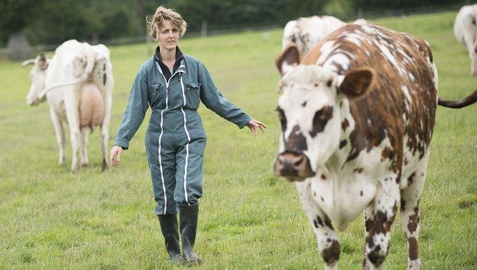Eleveuse avec ses vaches normandes