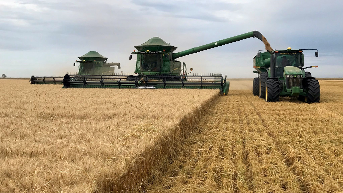 L'Argentine finit sa récolte de blé en beauté
