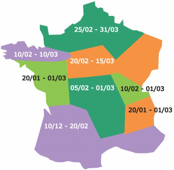 Période optimale de semis du pois de printemps selon les régions