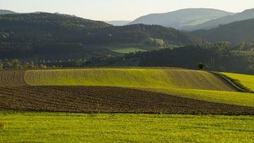 Un fermier qui ne respecte pas l'engagement bio peut être expulsé